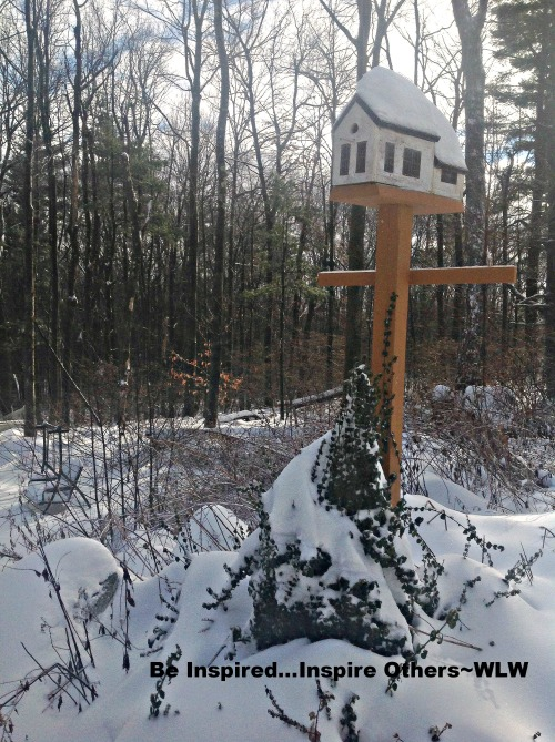 bird house in snow 7