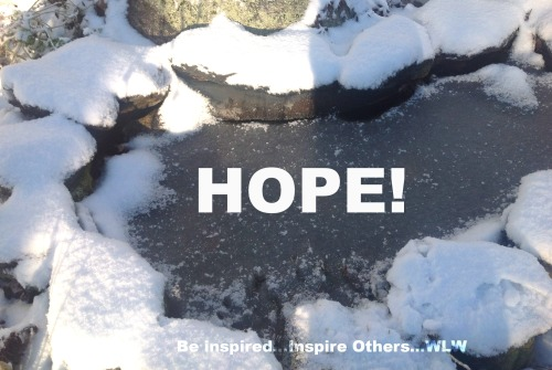 Frozen Pond-Hope!